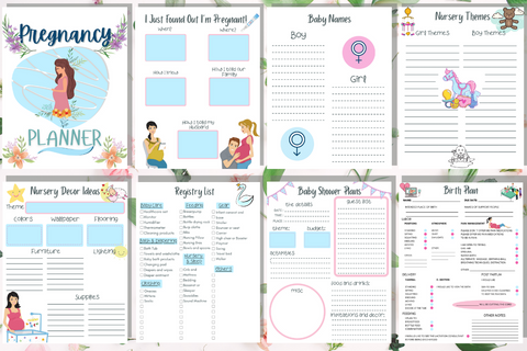 My Pregnancy Planner - Why Not Mom
