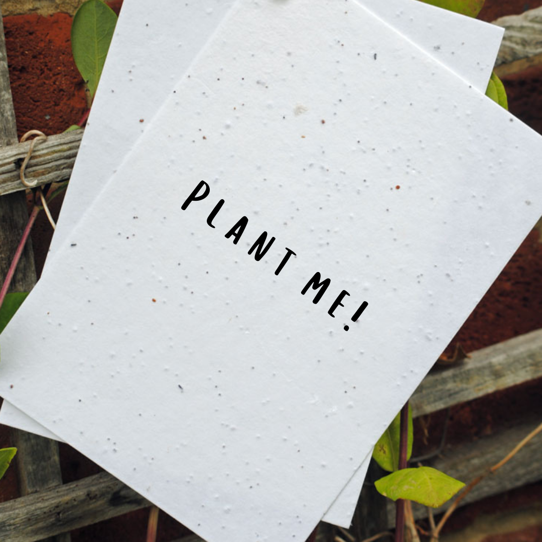Seed Card - Plant Me!