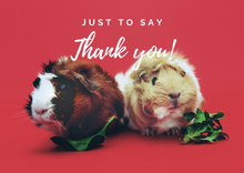 Load image into Gallery viewer, Thank You Guinea Pig Postcard