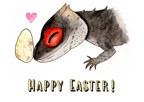 Easter Croc - Moon Gecko Illustrations