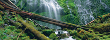 Load image into Gallery viewer, Proxy Falls - Metal Print