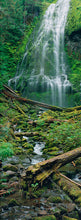 Load image into Gallery viewer, Proxy Falls II - Metal Print