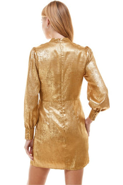 Metallic Self Tie Dress