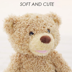 Peek A Boo Teddy Bear Play Toy (70% Off Today Only!)