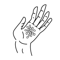 Illustration of a hand with scent beads on the palm