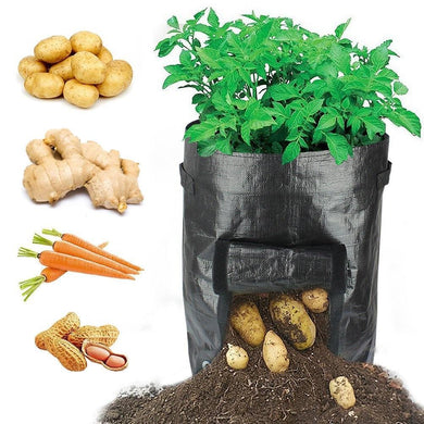 Potatoes Grow Bags (2pcs)