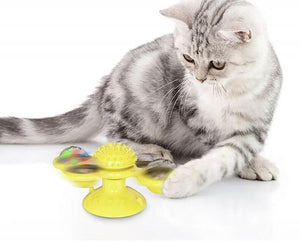Interactive Windmill Cat Toy