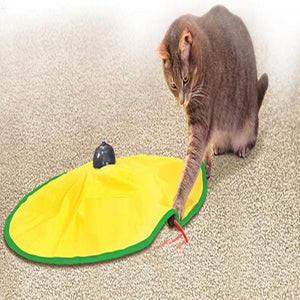 Motorized Wand Cat Toy
