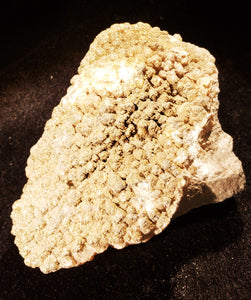 Specimens 010 Calcite with Pyrite Formation