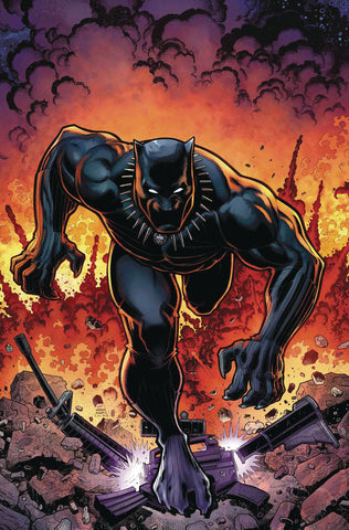 RISE OF BLACK PANTHER #6 ADAMS VARIANT