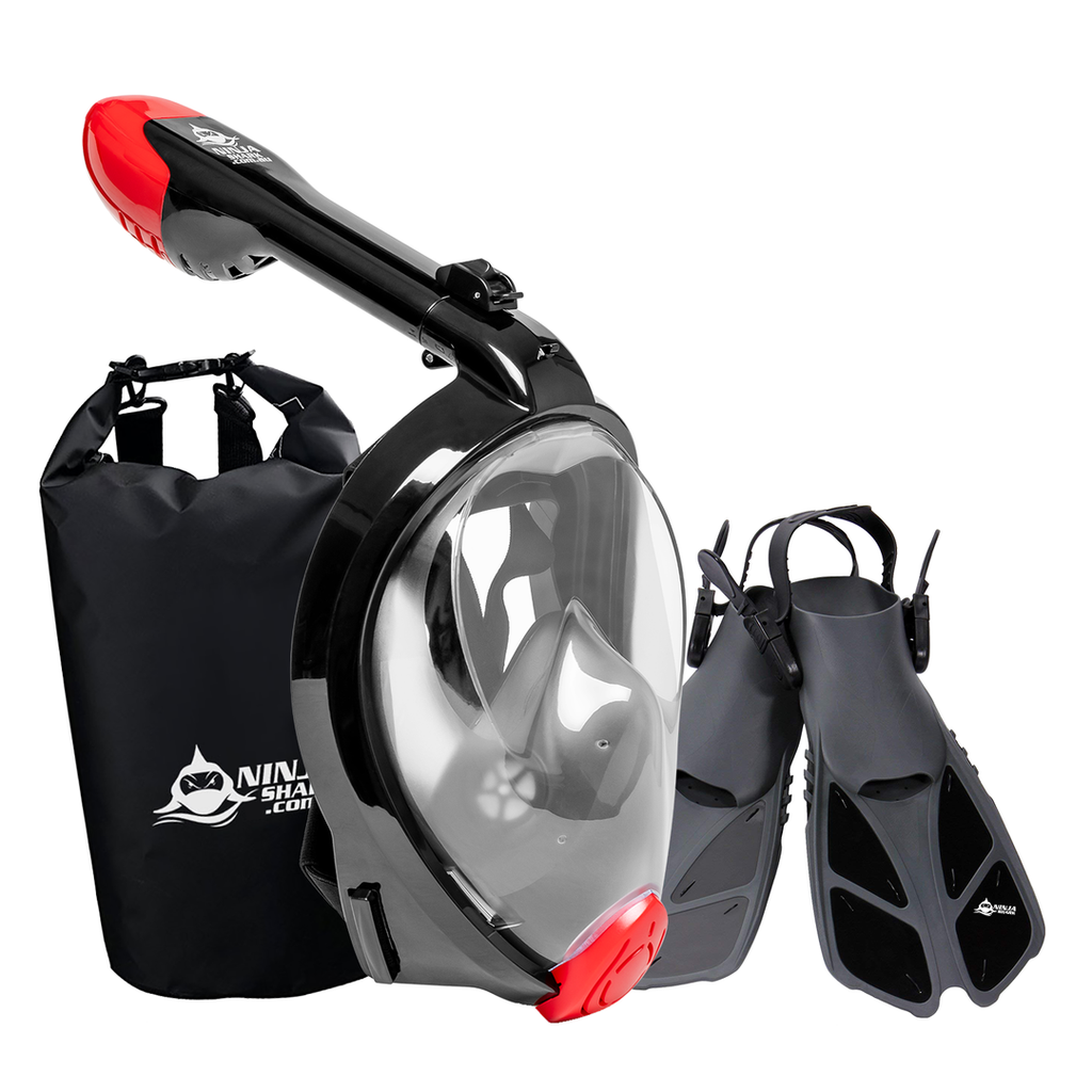 Package: Foldable Full Face Snorkel Mask for Adults