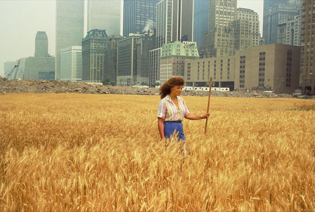 Agnes Denes, Wheatfield—A Confrontation. Two acres of wheat planted and harvested by the artist on the Battery Park landfill, Manhattan, Summer 1982. Commissioned by Public Art Fund. Courtesy the artist and Leslie Tonkonow Artworks + Projects. Photo: John McGrall.