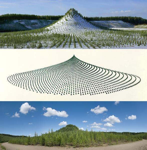 Tree Mountain – A Living Time Capsule—11,000 Trees, 11,000 People, 400 Years (Triptych), 1992—96, 1992/2013. Chromogenic print, 36 × 36