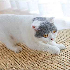 Natural Sisal Cat