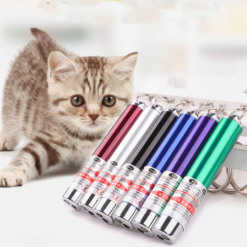 1pcs creative funny pet LED laser