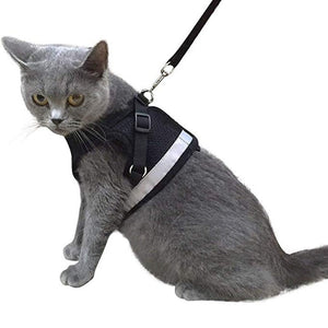 Cat Harness And Leash Set Pet Puppy
