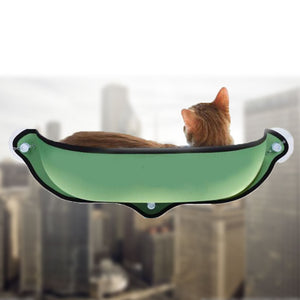 1pcs suction cup cat window glass