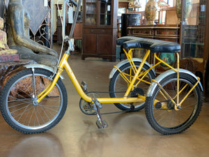 Worksman 3 Wheel 2 Person Bike