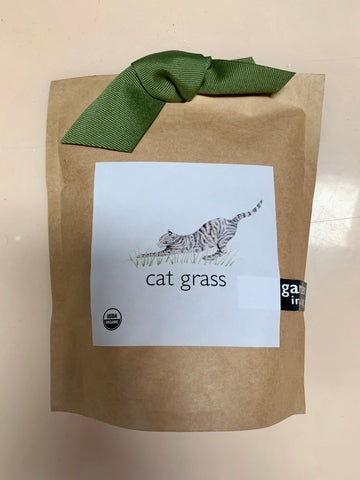 Cat Grass Garden in a Bag Seeds