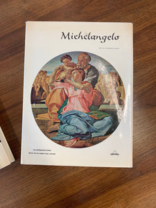 Michelangelo Art with Color Reproductions