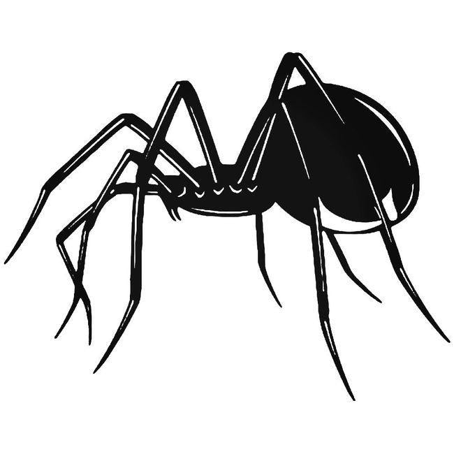 Black Widow Spider Arachnid Decal Sticker