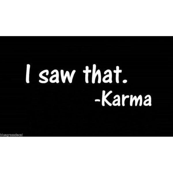 Karma I saw That Window Decal Sticker