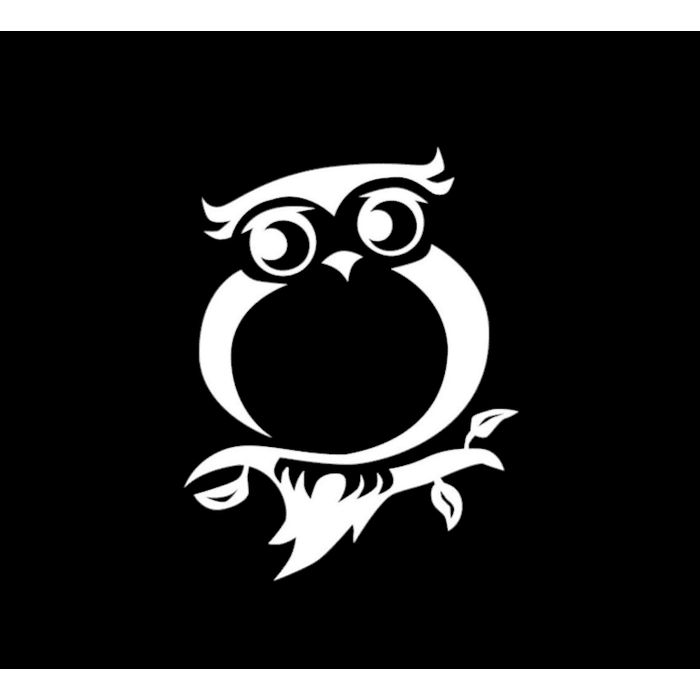 Owl Owls a3 Window Decal Sticker