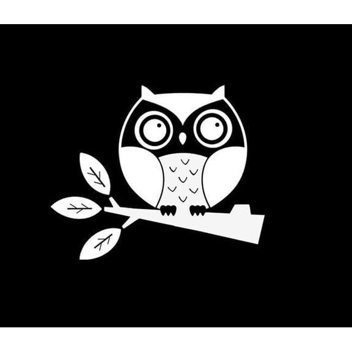 Owl Owls Window Decal Sticker A1