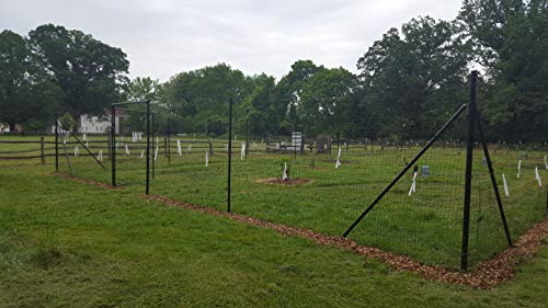 8' x 100' Welded Wire Deer Fence Kit
