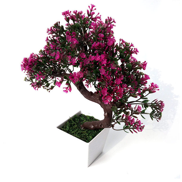 GORGEOUS BONSAI WITH VERY ATTRACTIVE POT -Excellent Gift.. Looks Almost real, without the hassle of Maintenance and dying