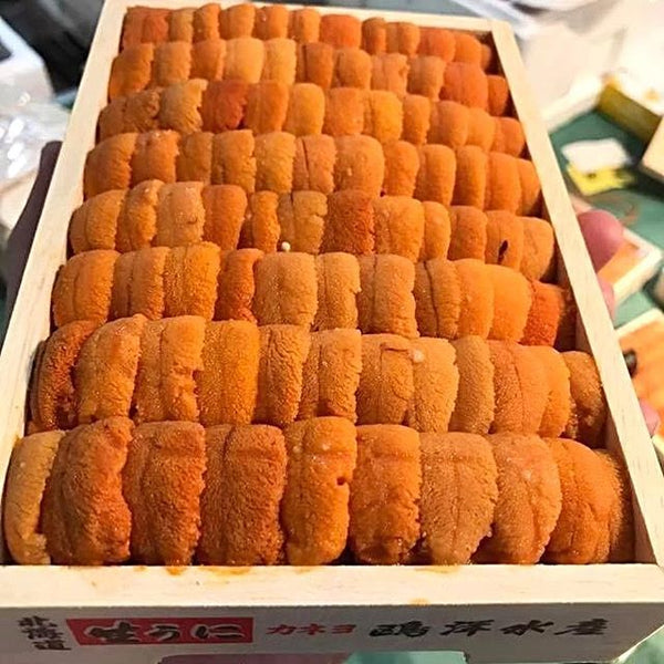 Fresh Sea Urchin Bafun Uni Narabi 250gm