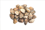 Frozen Asari Clam/Flower Clam (Short neck clam) 500gm/pkt