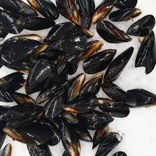 Loose Mussels
