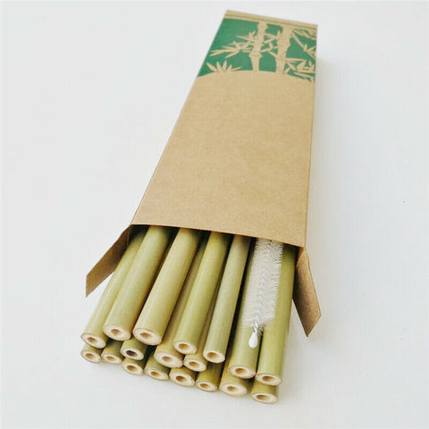 Bamboo Drinking Straws (12 pack)