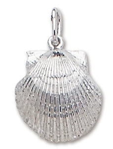Scallop Pendant with Chain