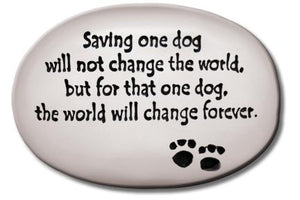 """Saving on dog will not change the world…"""