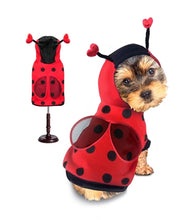 Load image into Gallery viewer, Ladybug Costume
