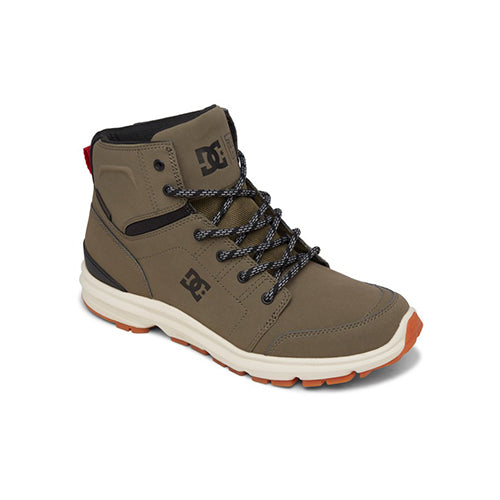 DC Men's Torstein Boot