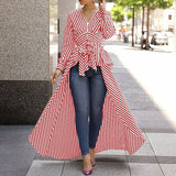 Shirt Dress Blouse