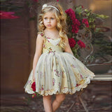 Flower Lace Princess  Dress