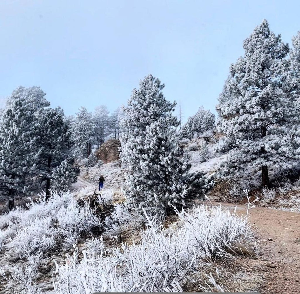 February 2021 Horsetooth Mountain Park & Reservoir Pictures