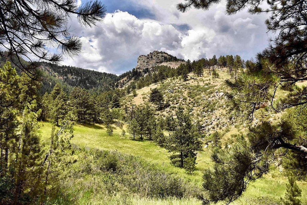 July 2019 Horsetooth Mountain Park & Reservoir Pictures