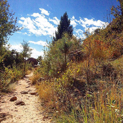 Horsetooth'd Photo- September 2015
