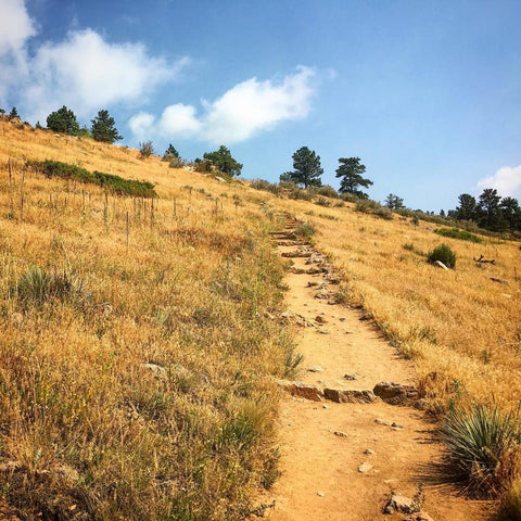 Horsetooth'd Photo-July 2016