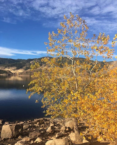 Horsetooth'd Photo-October 2016