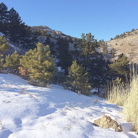 Horsetooth'd Photo- December 2015