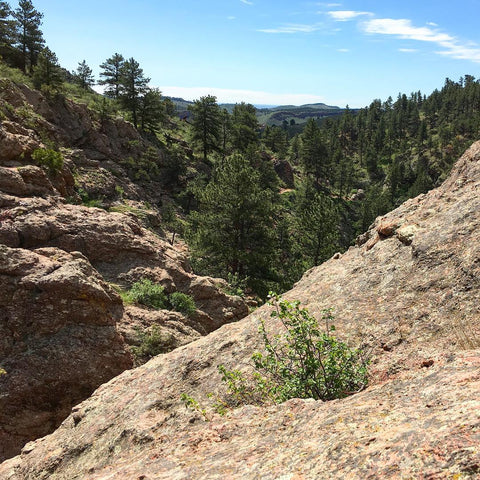 Horsetooth'd Photo- May 2016