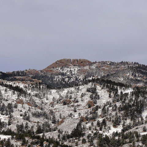 Horsetooth'd Photo- March 2018