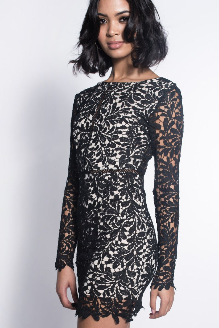 Long Sleeve Crochet Lace Bodycon