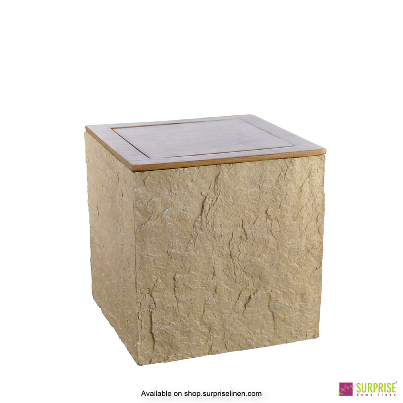 Surprise Home - Cube Dust Bin (Natural Brown)